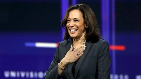 Kamala Harris: A Look Into Joe Biden's Running Mate